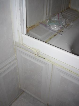 Hostal Plaza D'ort: Moldy shower1