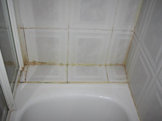 Hostal Plaza D'ort: Moldy shower2