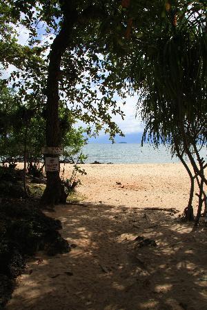 Palmeraie Beach Hotel : Way to the beach