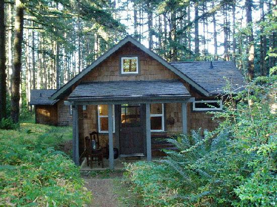 WildSpring Guest Habitat: Cabin