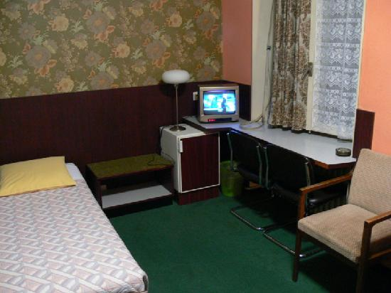 Hotel Rhodania: Rm. 28, Basic Single Bed, note the TV, fridge, writing desk, note the green!