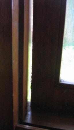 Hotel Don Carlos Puerto Maldonado: window gaps for mosquitos