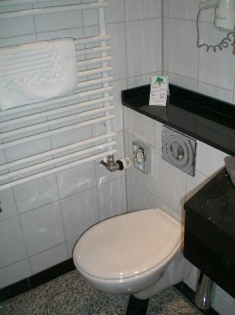 Hotel zum Adler : Toilette