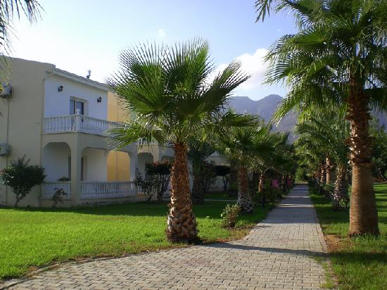 Mountain View Hotel & Villas : Bungalows