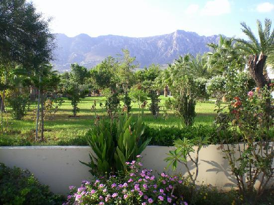 Mountain View Hotel & Villas: Garden, view of mountains