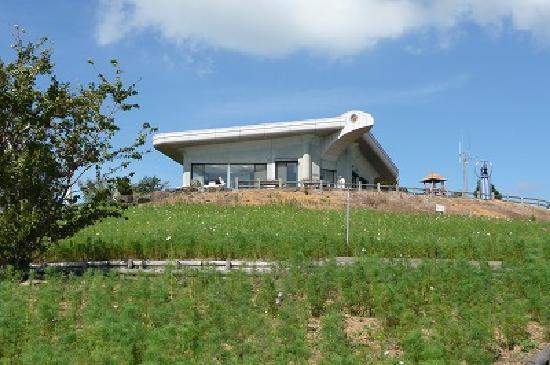 Washigamine Cosmos Park : コスモスと風の館