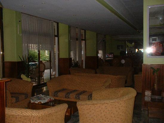 Avsar Otel: Hotel Lounge & Reception (Avsar Hotel)