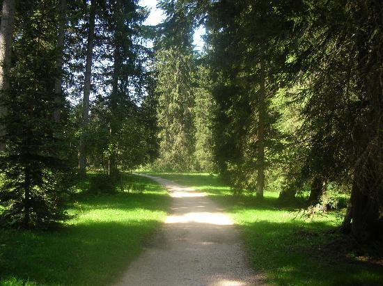 Les Breuleux, Sveits: Waldspaziergang