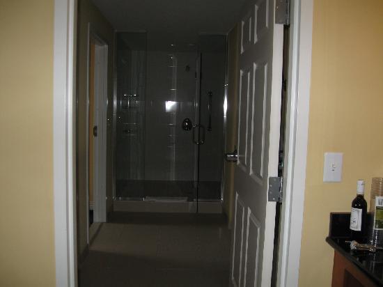 Wyndham Gettysburg: This is the shower