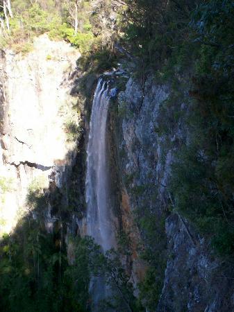 Springbrook, Australië: Waterfall 4