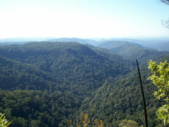 Springbrook, Avustralya: Some amazing views