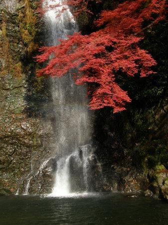Mino, Japan: 箕面の滝