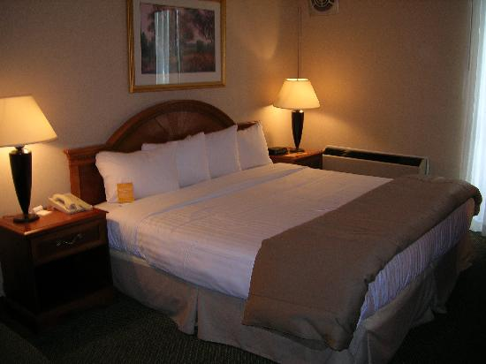 Quality Inn Detroit - Troy: Stand King GuestRoom