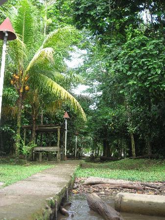Hotel Ilan-Ilan Trails & Lodge: Arrivée au lodge ilan ilan