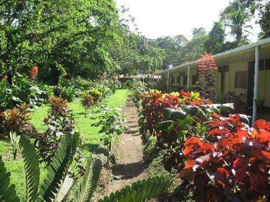 Hotel Ilan-Ilan Trails & Lodge: dans le jardin d'ilan ilan