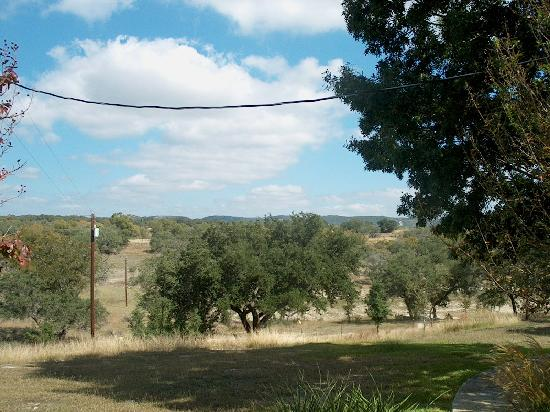 Paniolo Ranch Bed & Breakfast Spa: Nature from Outside our Room