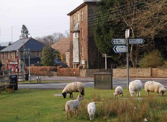 The Fountain Inn : Parkend Village