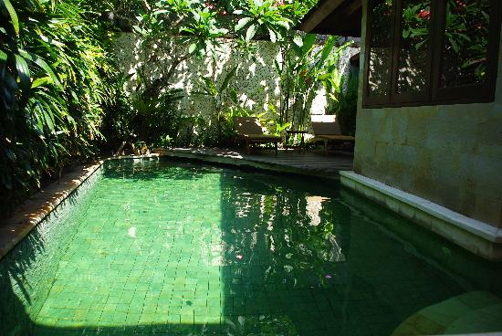 Jamahal Private Resort & SPA : Piscine de la suite Alamanda