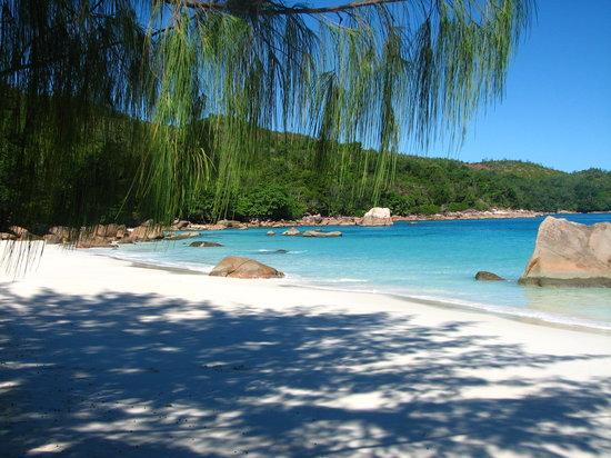 Seychelles,isola di Praslin,spiaggia Anse Lazio