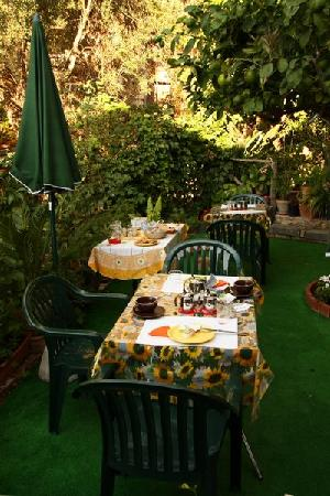 Bed & Breakfast Giulia : Breakfast in the garden