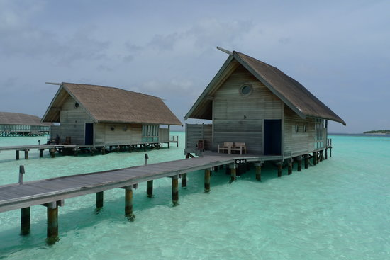 COMO Cocoa Island, The Maldives: Villa 801 and 802