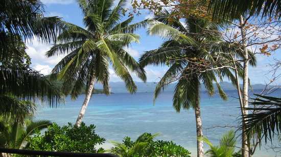 Matangi Island, Fiji: View from our Bure