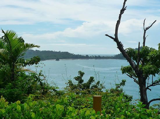 Arenas del Mar Beachfront & Rainforest Resort: The view.