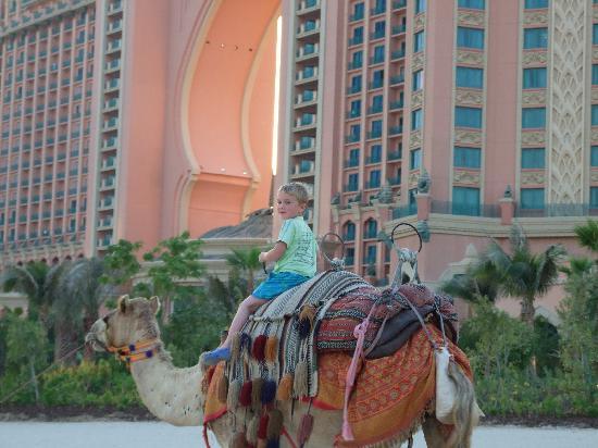 Atlantis, The Palm: Connor of Arabia!
