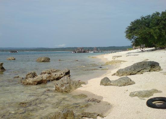 Pulau Umang Resort & Spa: Coral Beach Surrounds Pulau Umang