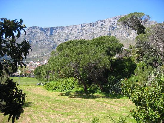 Mountain Magic Garden Suites: View from the garden