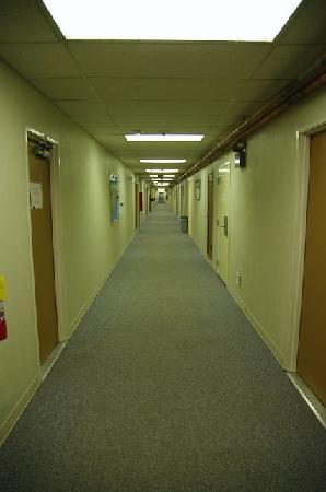 Saint Paul Island, AK: Le couloir de l'hôtel...