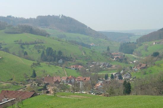Freiamt, Niemcy: Der Ort Brettental von oben