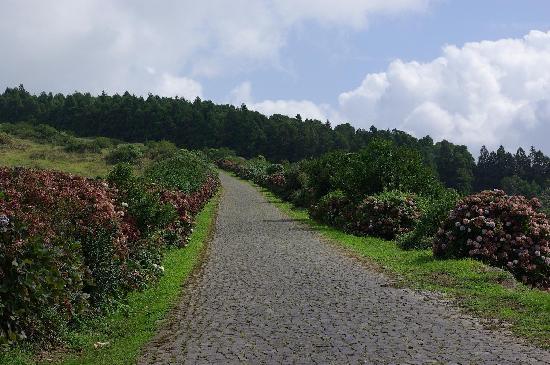 Hotel Terra do Mar: une route au centre de l'île
