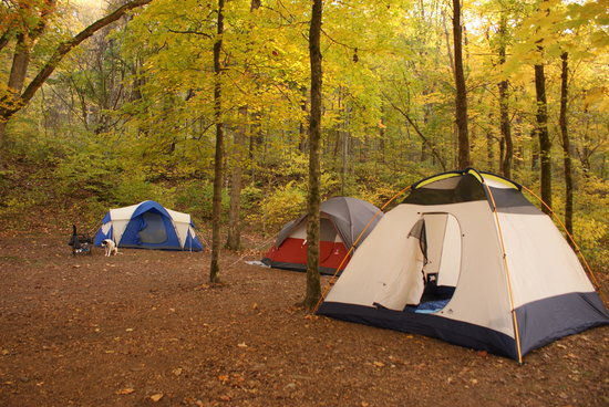 Houchins Ferry Campground: We spread our tents across two sites.