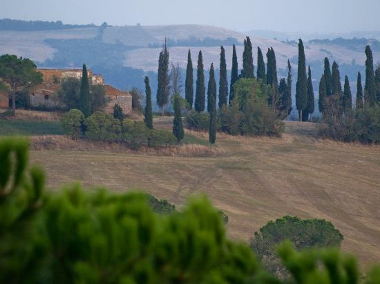 Agriturismo  Pieve Sprenna: the view