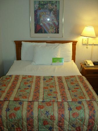 La Quinta Inn & Suites USF (Near Busch Gardens): Bed