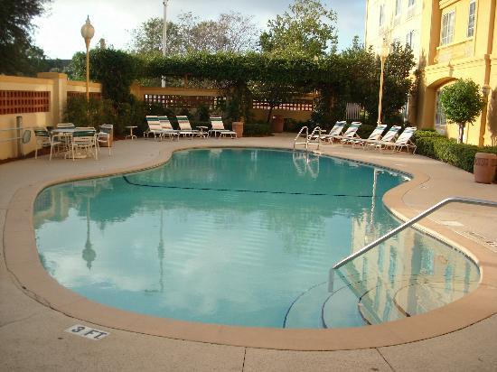 La Quinta Inn & Suites USF (Near Busch Gardens) : Pool