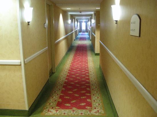 Holiday Inn Chantilly - Dulles Expo: Clean, bright, enclosed hallways