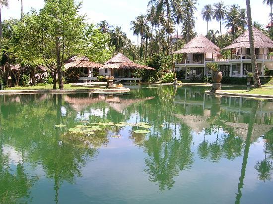 Koh Mak Cococape Resort: Natural pool