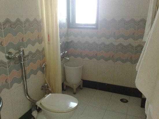 Hotel Golden Emerald : Shower