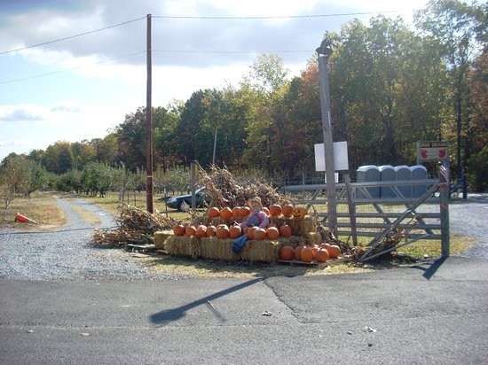 Bedford, VA: View from from door of store looking at road to Gross' Orchard