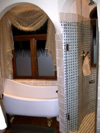 Wild Horses Lodge: the slipper tub and separate tiled shower of the Zebra Suite