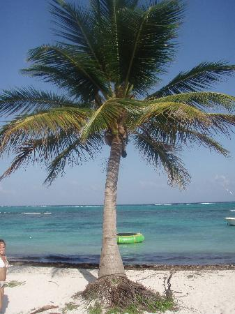 Soliman Bay, Messico: the beach