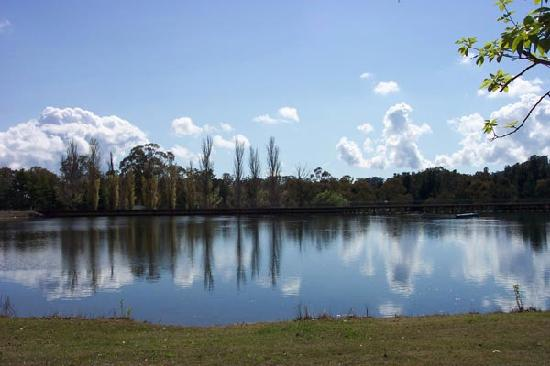 Lake Canobolas 1, NSWsnowfire