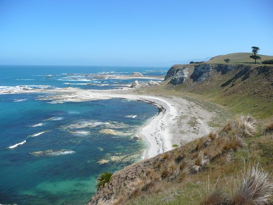 Kaikoura, Nya Zeeland: cliff top walk