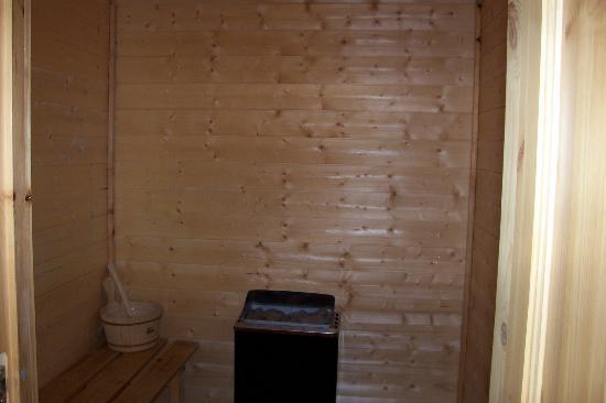 Chudleigh, UK: sauna