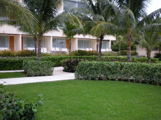 Presidente Inter-Continental Cozumel Resort & Spa : hotel grounds