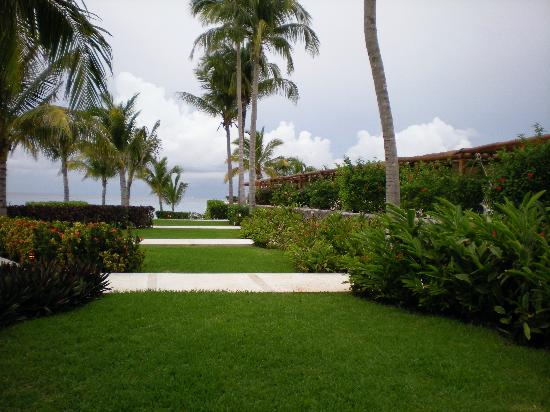 Presidente Inter-Continental Cozumel Resort & Spa : hotel grounds looking to the ocean