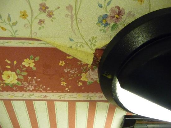 Terni Hotel: old and tired wallpaper