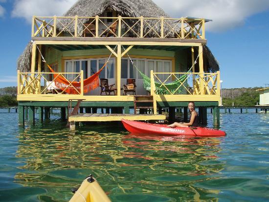 Tripadvisor Bocas Del Toro Panama: Picture Of Punta Caracol Acqua Lodge